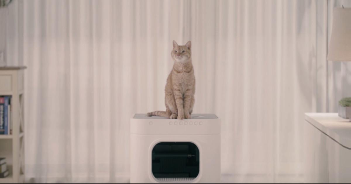 ネコは大好き!!でもトイレの掃除は苦手、そんな方に3週間に一度掃除すれば大丈夫な全自動トイレ「LavvieBot S」
