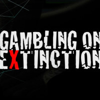 Gambling on extinction indiegogo