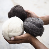 Support us in creating the finest wool of Ladakh