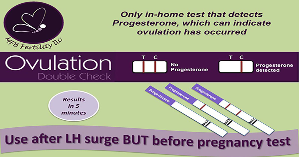 Clomid And Progesterone Test