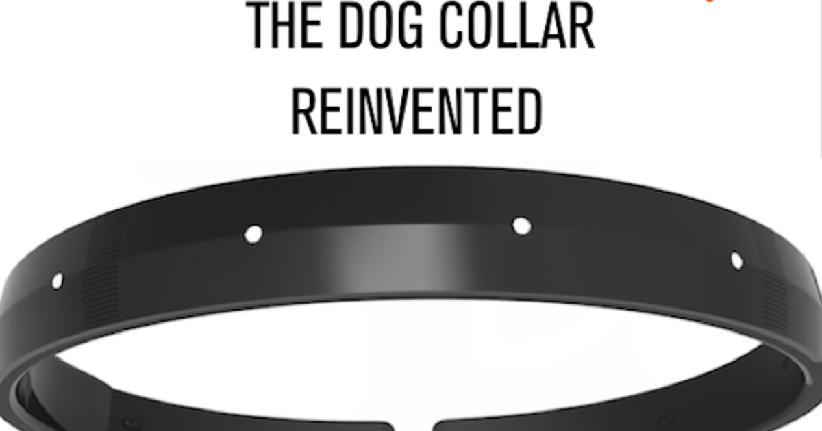 The First All-In-One Smart Dog Collar