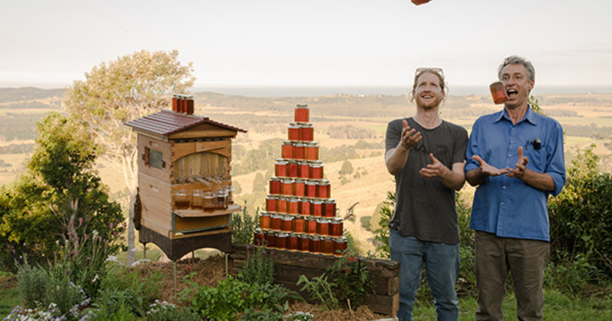 Flow Hive Honey On Tap Directly From Your Beehive Indiegogo