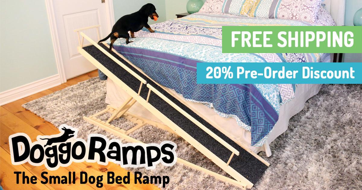 Dog Ramp For Car >> DoggoRamps - The Small Dog Ramp | Indiegogo