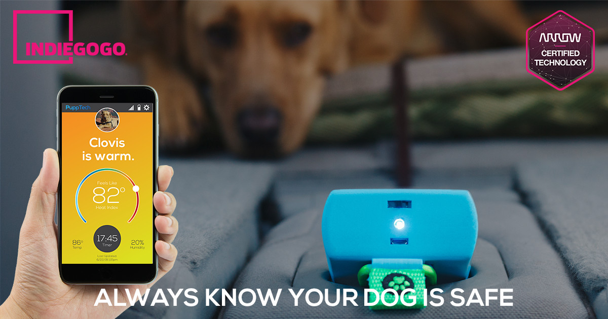 PuppComm: Always Know Your Dog is Safe Everywhere