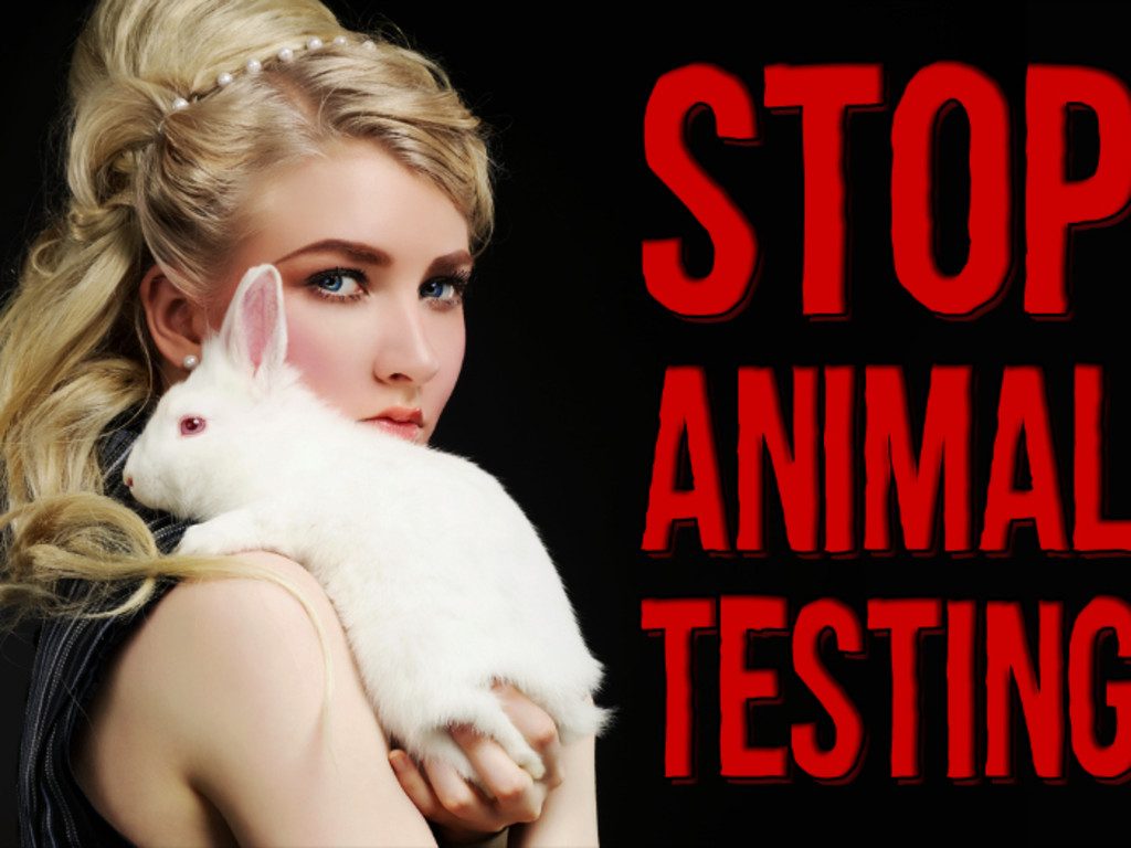 understanding animal testing and cruelty