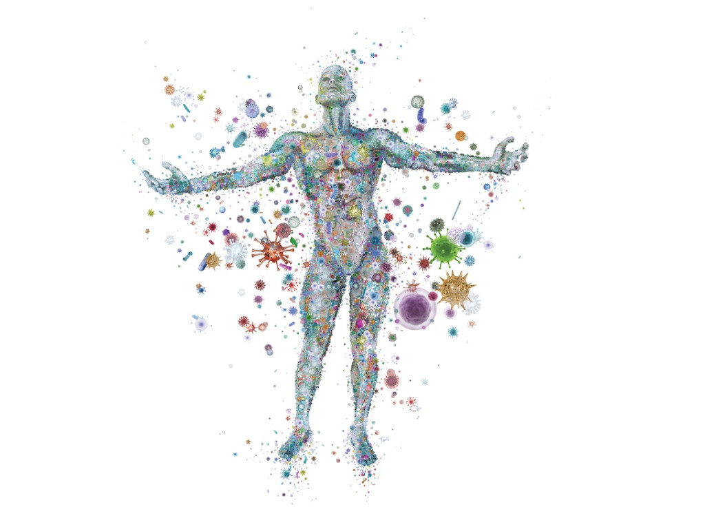 Discovering the Human Microbiome