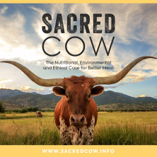 SACRED COW: THE CASE FOR BETTER MEAT | Indiegogo