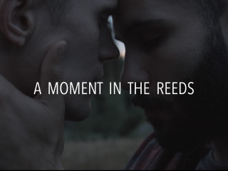A Moment In The Reeds Tama Hetki Kaislikossa Will Be The First Ever Gay Romance Feature