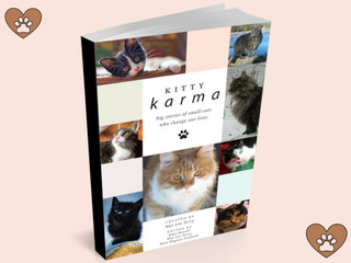 Kitty Karma cover