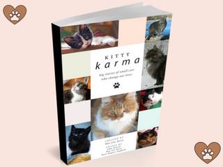 Kitty Karma cover