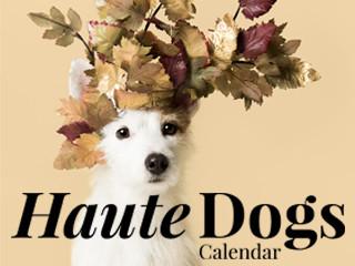 Haute Dogs Calendar 2019 Indiegogo