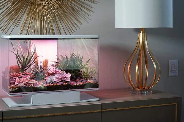 SmartTerra: Terrarium Revolutionized