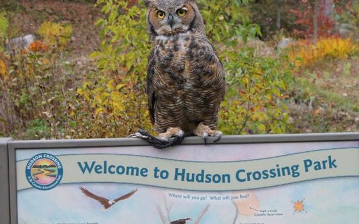 Hudson Crossing Park: Seizing Opportunities