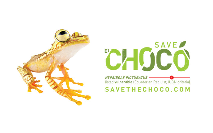 Save the Choco
