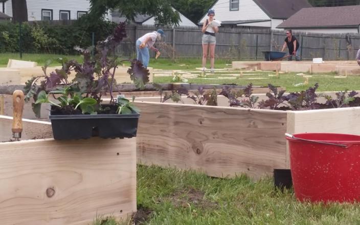 New Community Garden in Ferndale, Michigan