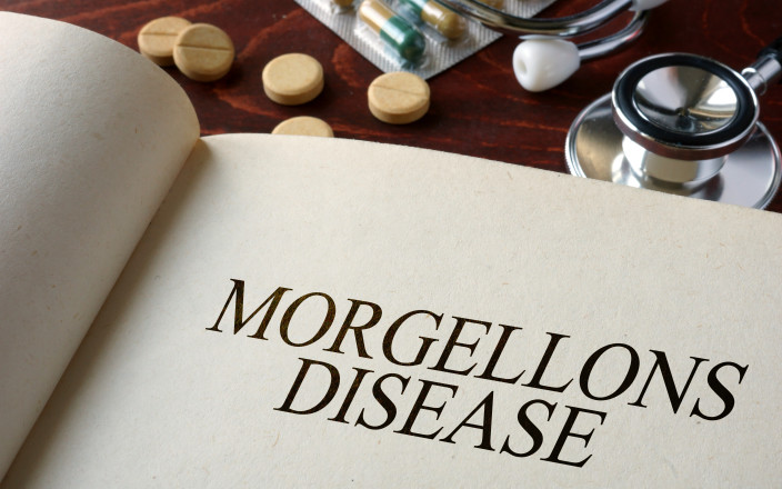 Morgellons Disease Research Needs Your Support