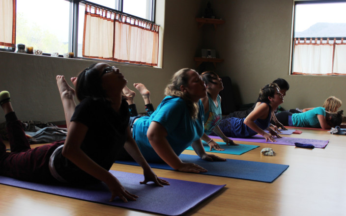 Yoga for Incarcerated Youth Project