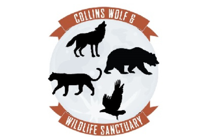 Collins Wolf And Wildlife Sanctuary