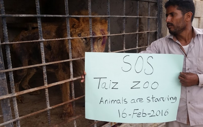 Save the Taiz Zoo animals in Yemen NOW!