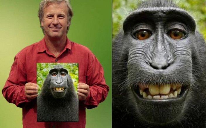 Help David Slater AKA 'Monkey Selfie' photographer