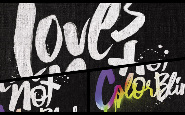 The Love's Not Color Blind Book Tour