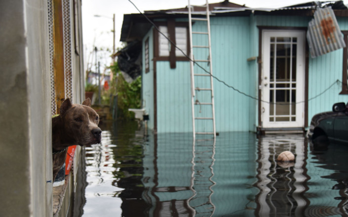 There's still time to Help Hurricane Maria Victims