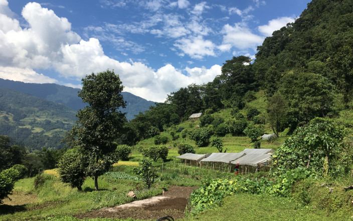 Saathi Bio Farm Community Project