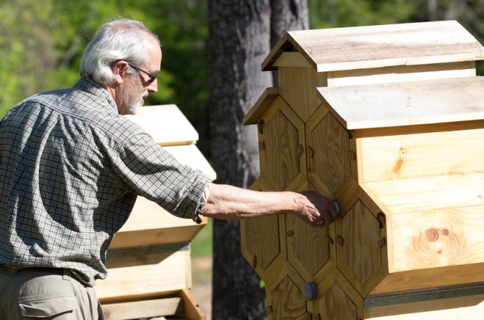 HONEYCOMB HIVES: Game-Changing Beehives Reimagined   Indiegogo