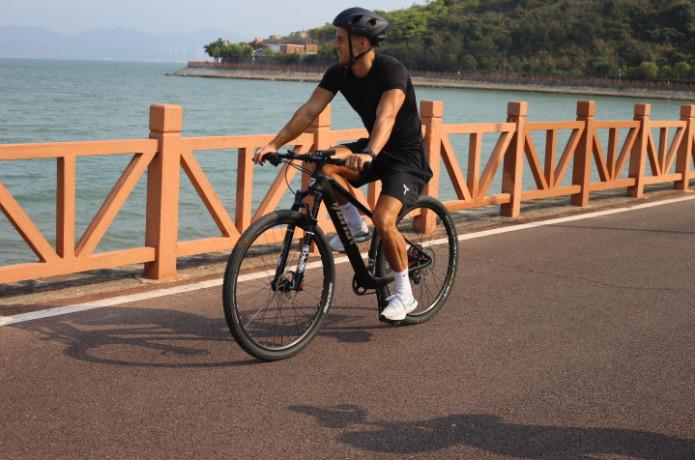 MOTION Carbon Fiber Bike