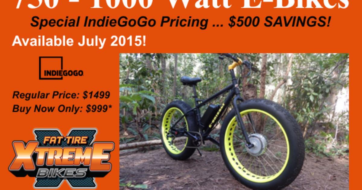 19cabe1423e Powerful Electric Fat Bike 750