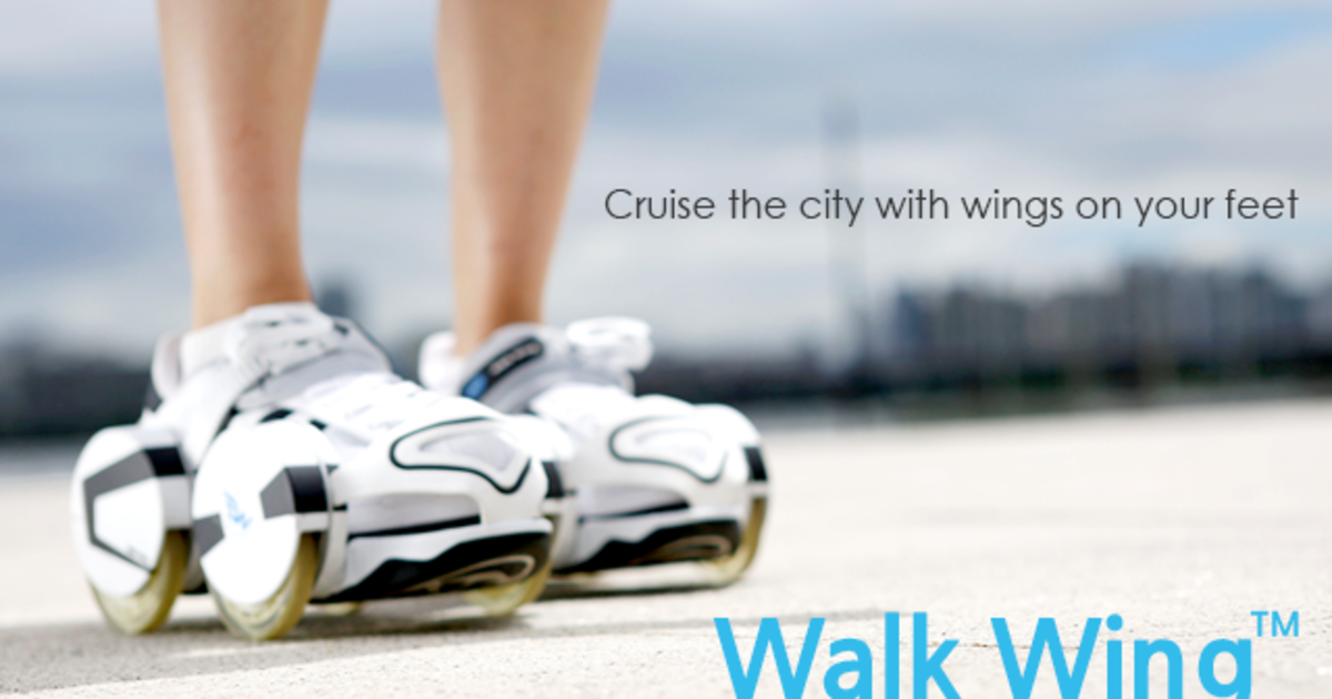 Walk Wing An Exciting New Way To Move Around Indiegogo