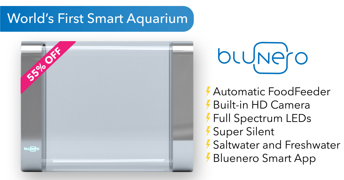 bluenero world s most advanced smart aquarium indiegogo