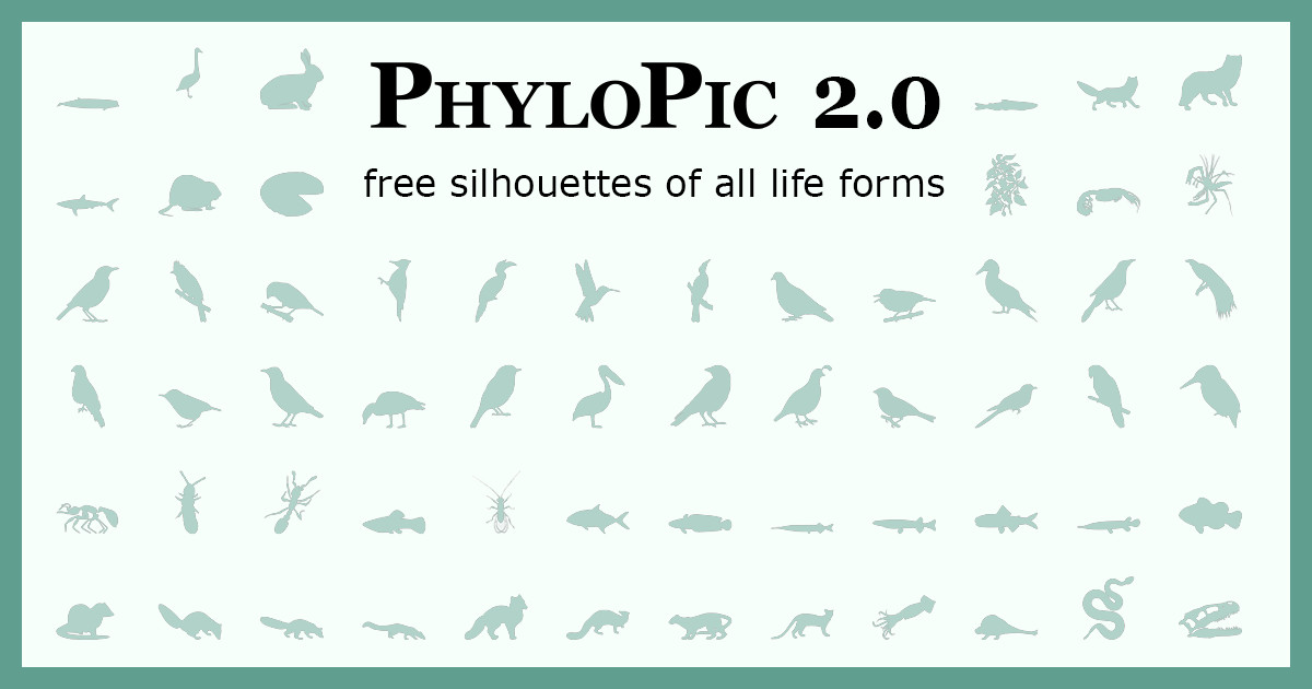 PhyloPic 2 0: Free Silhouettes of All Life Forms   Indiegogo
