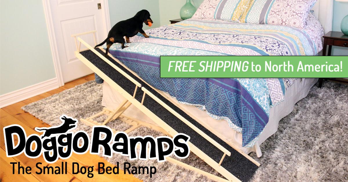 Doggoramps The Small Dog Ramp Indiegogo