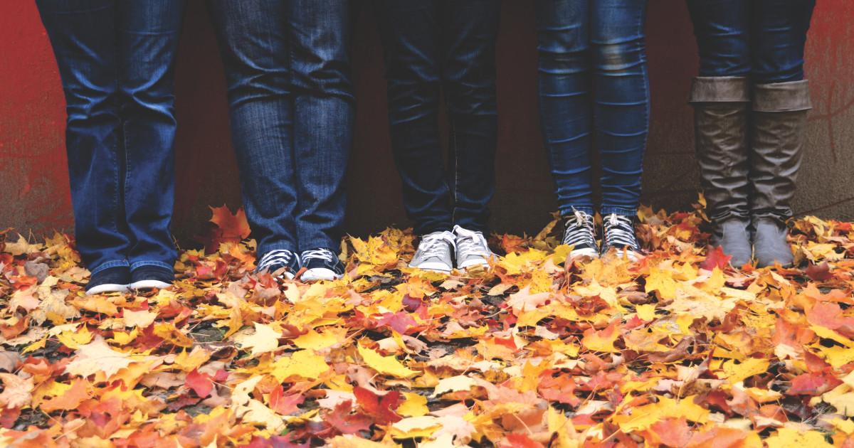 Free Leaf Drop Off in Aurora | Indiegogo