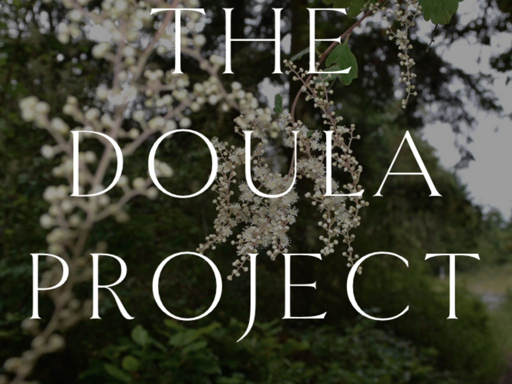 doula project Click here to be taken to our new website we also changed our name from boston doula project to boston abortion support collective.