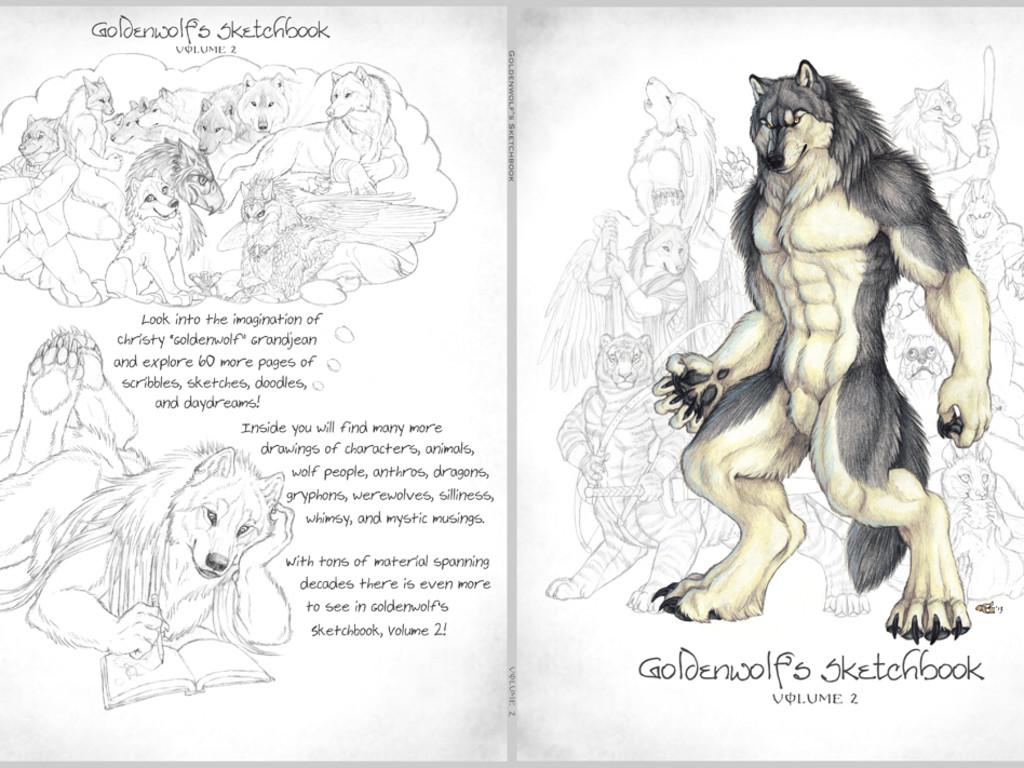 Goldenwolfs sketchbook volume 2 indiegogo