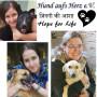 Hund aufs Herz e.V. - Hope for Life (NGO)