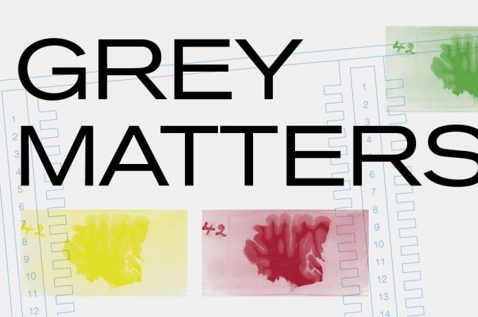 Grey Matters | Indiegogo