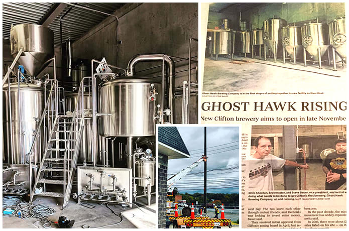 Image result for ghost hawk BREW