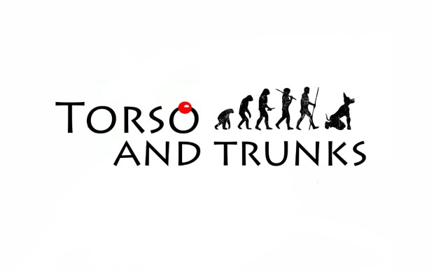 Image result for torso and trunks