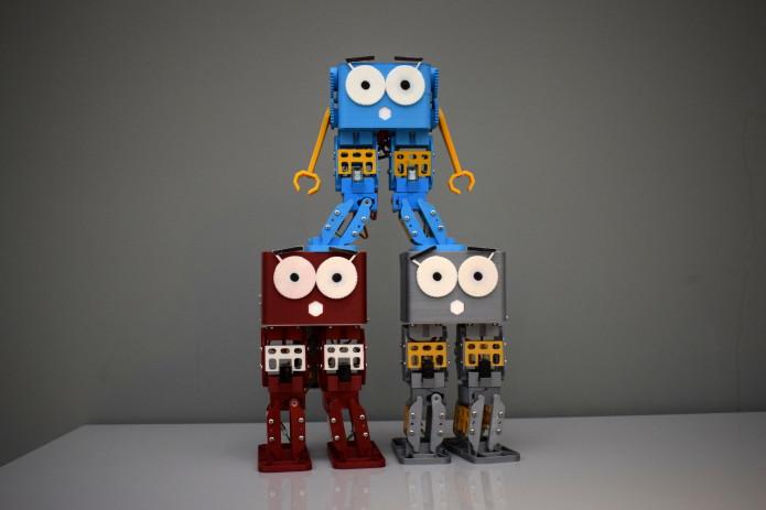 Marty The Robot | Indiegogo