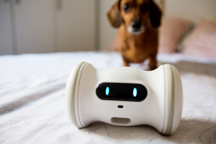 A Smart Robot For Your Pet - VARRAM | Indiegogo