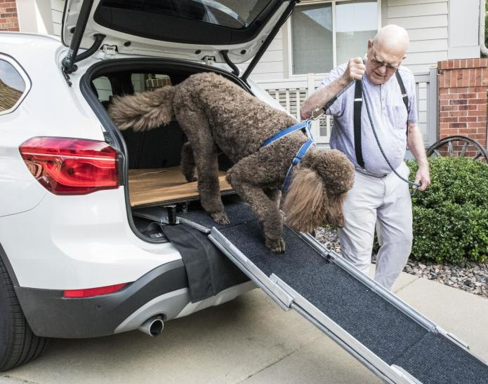 InYaGo Retractable Vehicle Access Ramp for Dogs | Indiegogo