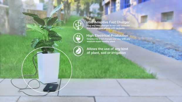 biooteam bioo lite plante