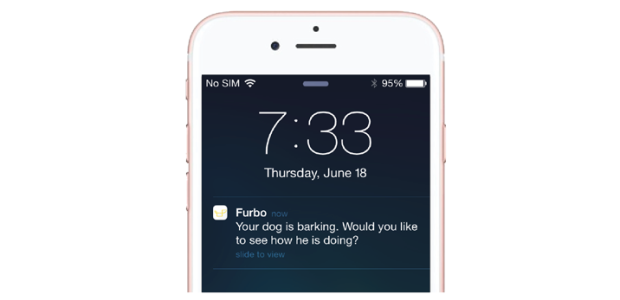 Furbo Bark detecting sends push notifications to phone