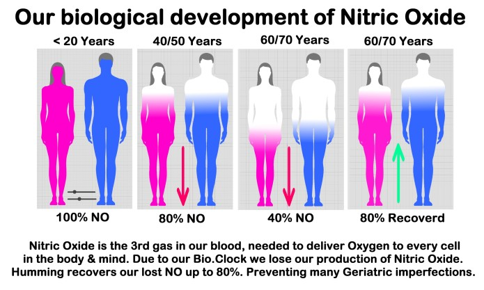 what is nitric oxide in the body