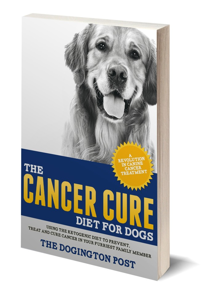 The Cancer Cure Diet For Dogs Indiegogo