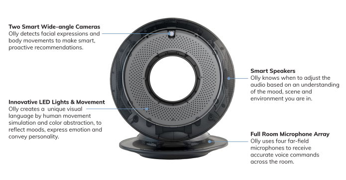 Olly - The First Home Robot with Personality | Indiegogo