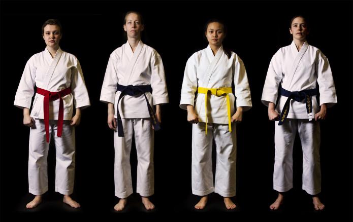 Résultats de recherche d'images pour «risks martial arts»
